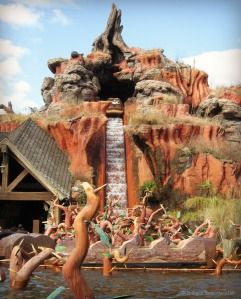 splash mountain | Our Florida Challenge | OurGlobetrotters.Net
