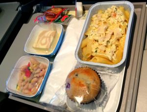 Garuda Lunch | Family-friendly Airline Reviews | BabyGlobetrotters.Net