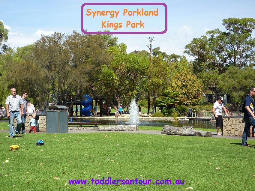 Synergy Parkland | Perth with Kids | Explore My City | BabyGlobetrotters.Ne